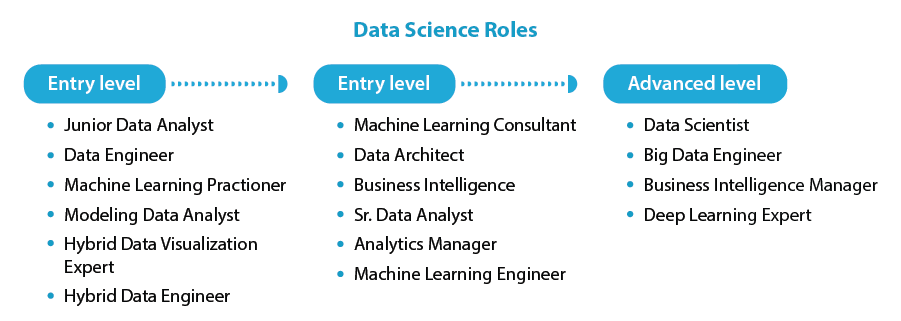 Amity Future Academy - Data Science Roles